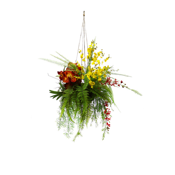 GREENERY PLT124-Hanging Orchid Mix-138cm