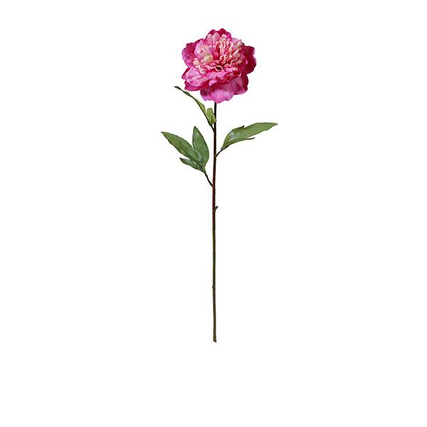 Peony-RT-28IN-(PNY-RT28IN-DKPK)-Dark-Pink---70cm